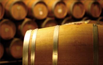 Open-Co è leader nel settore vitivinicolo