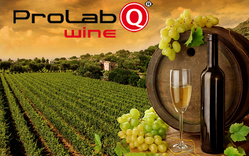 Prolab.Q LIMS 4.0 news for Wineries