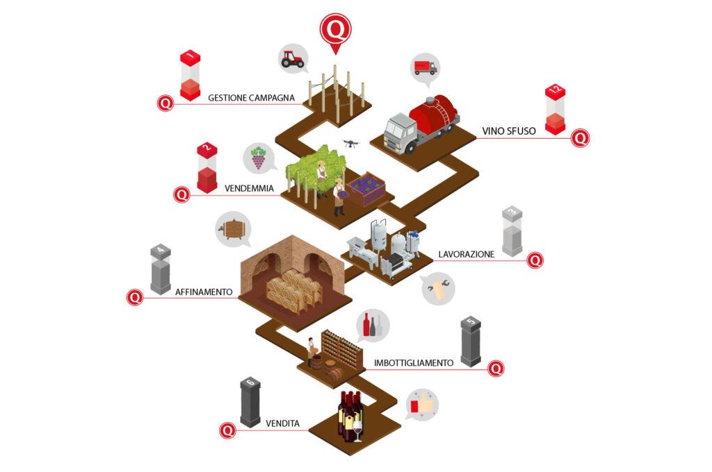 Infografica gestione azienda vitivinicola